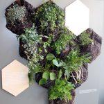 Groene muren en Air Planting van Carolijn Slottje